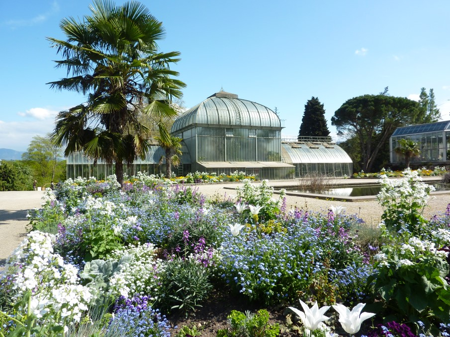 Sortie au jardin botanique — Commune de Laconnex • Canton ...